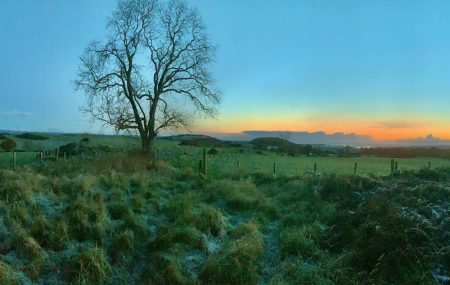 picture of countryside with sunrise